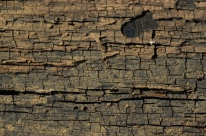 Cracked Wood Wallpaper Image