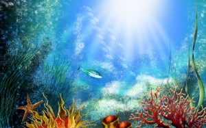 Animals Under Water Aquarium background Picture