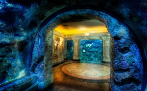 Shark Reef Aquarium background Wallpaper Image