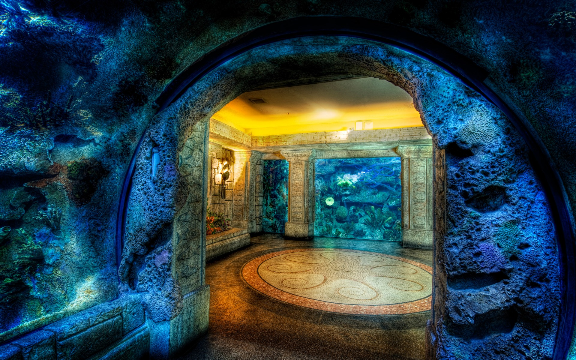33 attractive aquarium background technosamrat shark reef aquarium background wallpaper image voltagebd Gallery