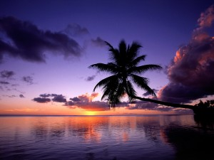 Sunset Ocean Wallpapers Picture
