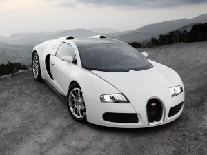 Picture of Beautiful Bugattis