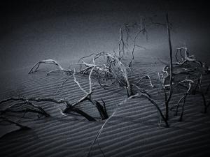 Black and White Desert Wallpaper Image