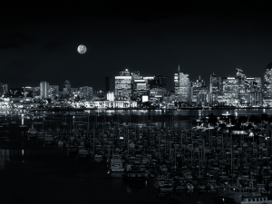 Black and White Night Wallpaper Picture
