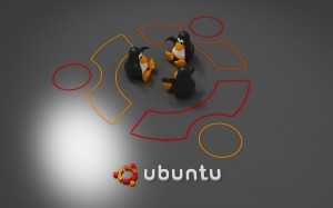Ubuntu Penguin Wallpaper Picture