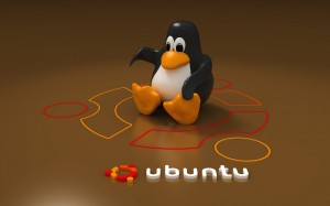 Ubuntu Penguin Wallpapers Picture