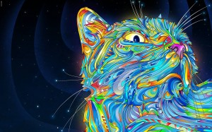 Colorful Cat Desktop Background Picture