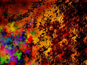 Colorful Wallpaper Background Picture